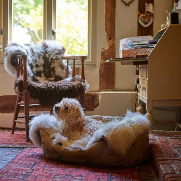 Kožušinový pelech pre psa alebo mačku