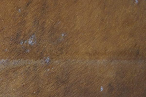 Hovädzia koža 200x170 cm